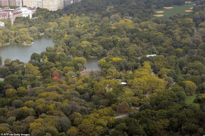 The image above shows a view to the north and Central Park from the 75th floor at 432 Park Avenue in October 2014