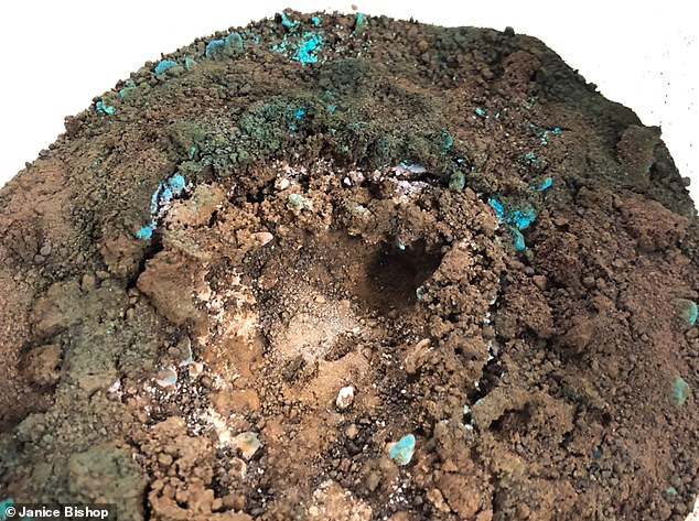 Mars soil analog material covering calcium sulfate and calcium chloride from below, absorption of water by salts and soil particles, migration of the salts towards the surface, and formation of crust with cavities