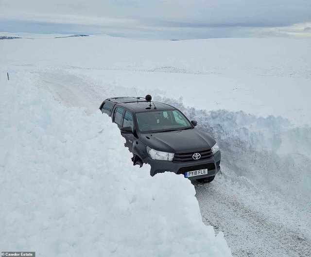 Snow was so deep on the Cawdor Estate at Nairn in the Scottish Highlands yesterday that a 4x4 car could hardly be seen