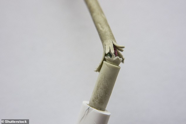 Frayed cables are a bugbear for Apple users. As Apple points out, cables feature a 'relief sleeve' at either ends - but the fraying just ends up occurring beneath these layers of protection
