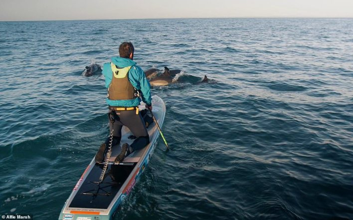 Dolphins helped to keep Jordan's spirits up as he crossed the Irish Sea