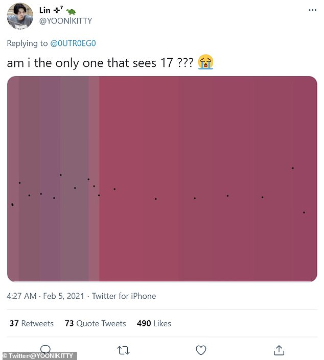 One user said they could see 17 shades, and marked them out - but the consensus was somewhere between 11 and15