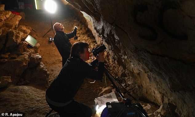 Picture shows researchers studying a palaeolithic drawing inside the Marsoulas Cave in the foothills of the French Pyrenees