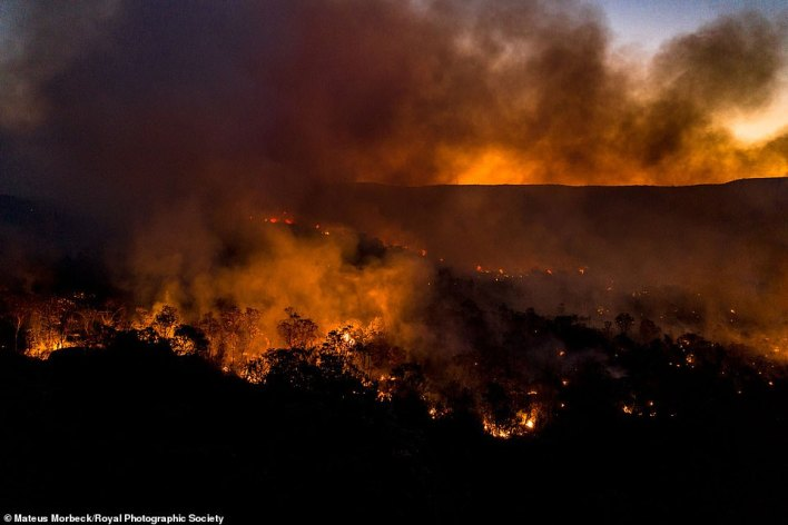 Pictured, an entry from Mateus Morbeck which shows a forest fire blazing on a mountain plateau in Brazil. The Amazonas and Pantanall regions of Brazil experienced 44,000 fires between January and August of 2020, destroying more than 6,000 square km — an area roughly the same size as the entire county of Devon
