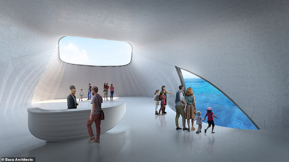 The centre has been designed by London-based Baca Architects, which says the cetacean design is an 'abstract interpretation' of a whale in Geographe Bay performing a 'spy hop', the term used to describe the animal taking a peek at life above the water