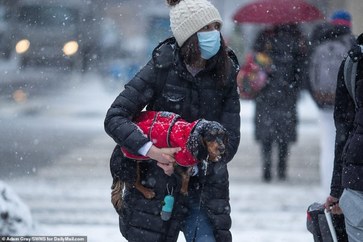 MANHATTAN, NEW YORK: A woman is seen carrying her dog as they walked in the snow in Manhattan Thursday morning