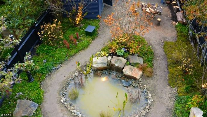 After considering two proposed designs, Marcus and Pam opted for the one by Tom Massey - renowned for his radical, bold approach - who wanted to transport the couple to another world. Pictured, the water feature in the transformed garden
