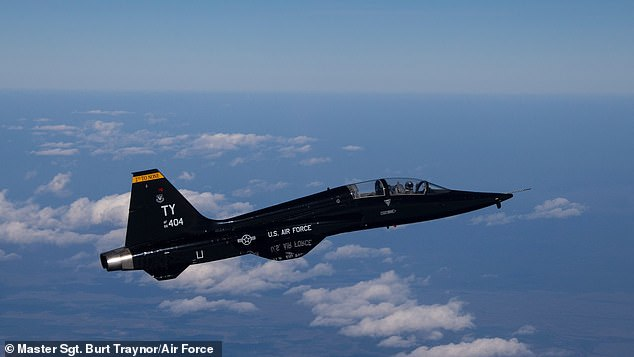 Pictured: A T-38 jet, the model being flown before crashing in Alabama on Friday
