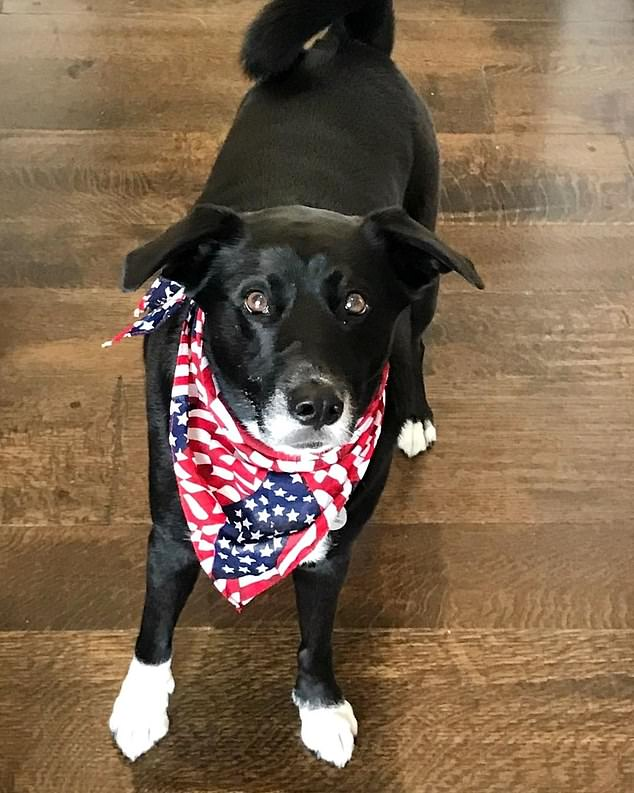 In a second image, Rose can be seen on her own looking up to the camera - and she looked just the part with a American flag printed neckerchief on