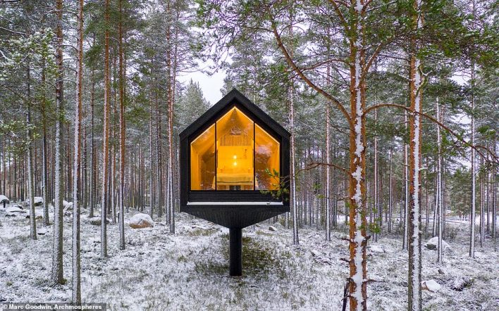 By raising the cabin, the designers say it willhelp those inside 'feel immediately detached from everyday worries happening on the ground'
