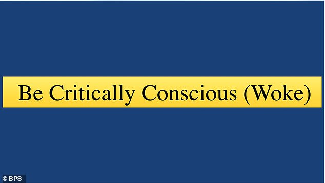 Teachers were told that they had to 'be critically conscious (woke)'