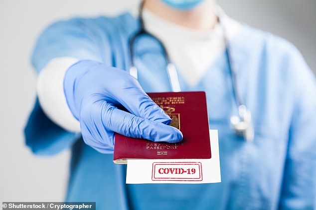 The European Union said its 'vaccine passports' scheme could be opened up to the UK. (Stock image)