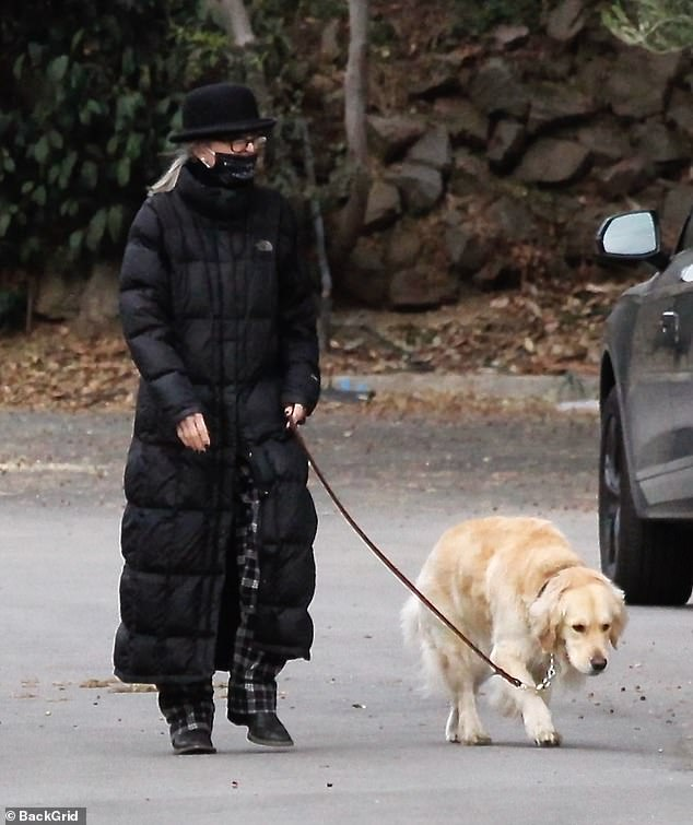 Diane's look: Keaton wore a black quilted coat from The North Face that fell to her ankles as she walked her dog