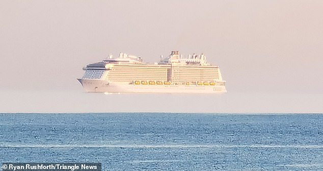 The latest viewing was spotted by Ryan Rushforth off the coast of Bournemouth, Dorset, yesterday evening