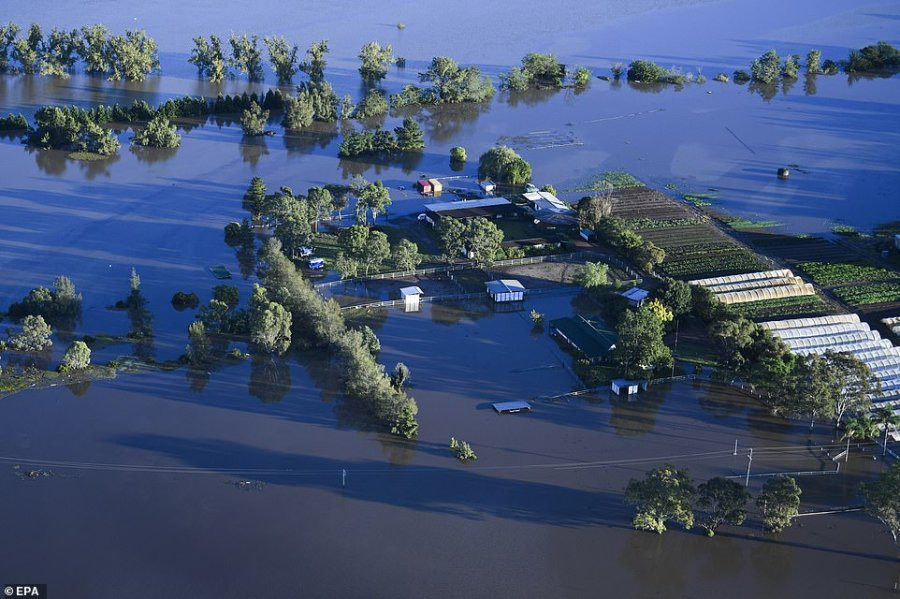 Other photos taken from a helicopter on Wednesday morning showed crops left in ruin