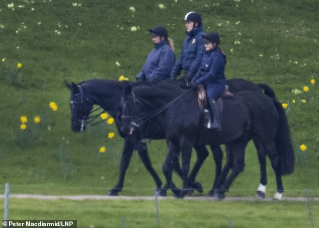 Prince Andrew was spotted enjoying a horseride amid the daffodils in the grounds of Windsor Castle this morning with two female companions