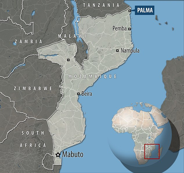 Dozens of people have been killed in an attack by Islamist insurgents on the northern Mozambique town of Palma