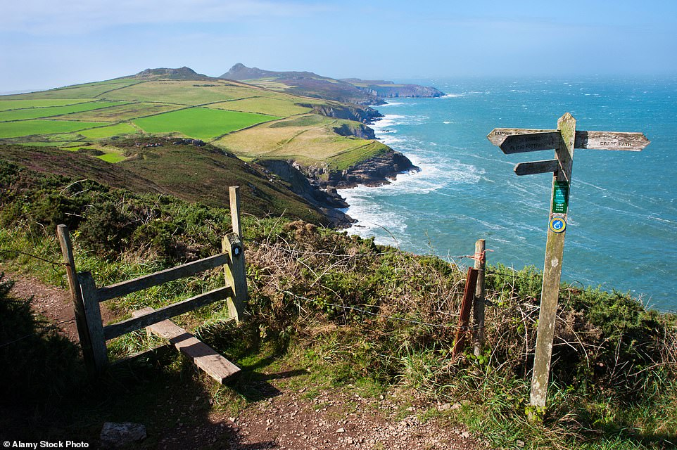 Cheers: The wild shore of St David's Head in Wales, whichis studded with ancient wonders
