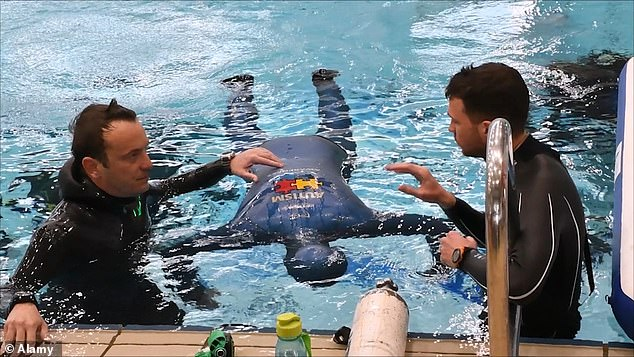 Taking place in a swimming pool in the town of Sisak, ¿obat was under supervision from doctors, reporters and supporters as he completed he record attempt