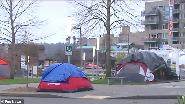 Residents of Seattle said they were 'sad' and 'depressed' over the homeless encampments that have sprung up across city parks and fields where children normally play sports