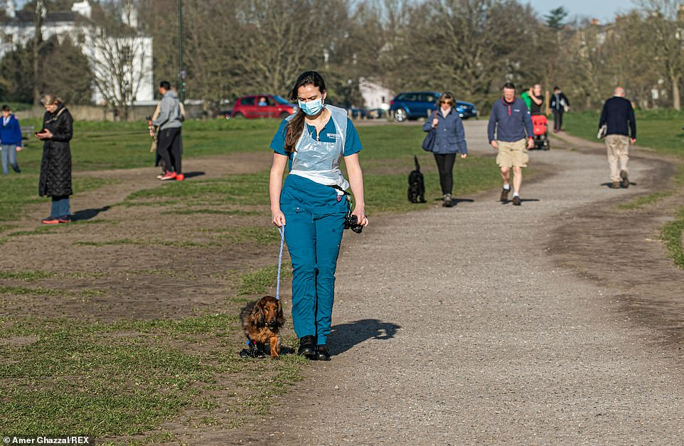 Dog walkers took their pets out for an early morning stroll in Wimbledon, south west London today