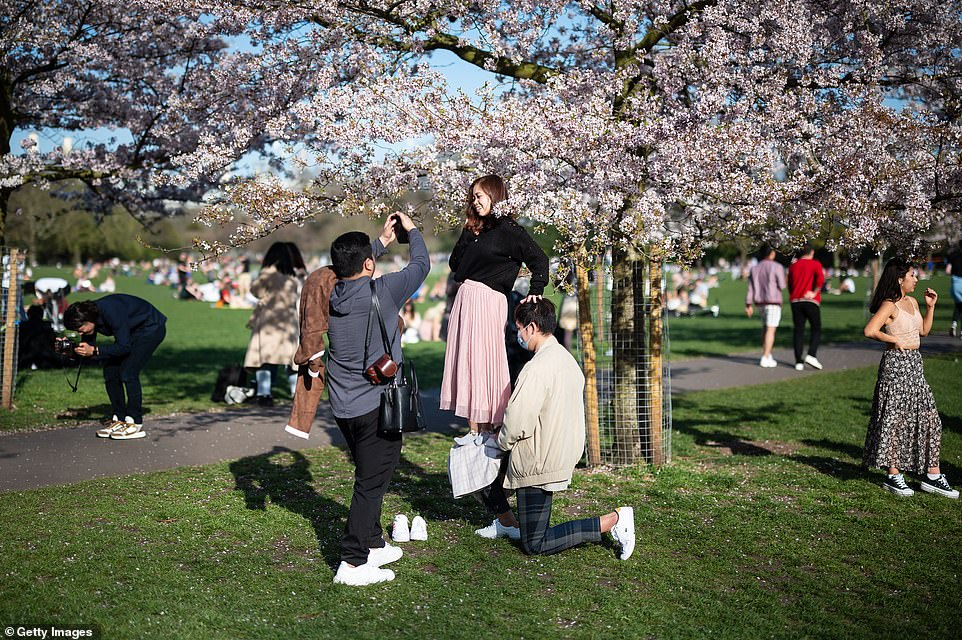 A woman is seen balancing on a friend as she poses for photographs in the blossom in Battersea Park on Tuesday