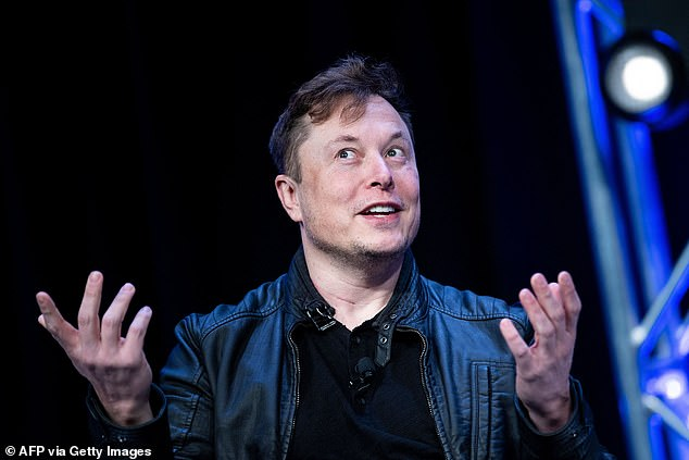 Visionary: Musk said earlier this month that his company will touch their ships down on Mars 'well before 2030'