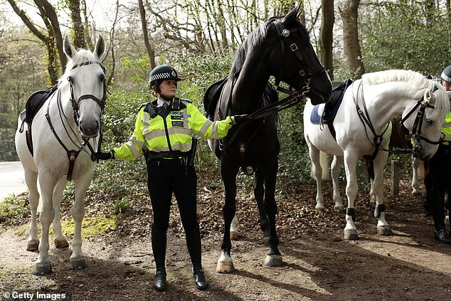 Mounted units have been patrolling the Essex woods in search of the teenager since April 1