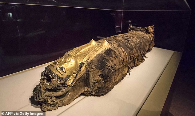 Beginning at 6:00 pm (1600 GMT) on Saturday, the procession will take place under the watchful eyes of hefty deployments of security forces. Pictured is a mummy discovered in the Valley of the Golden Mummies in 1996. Experts found 34 in total while excavating the site