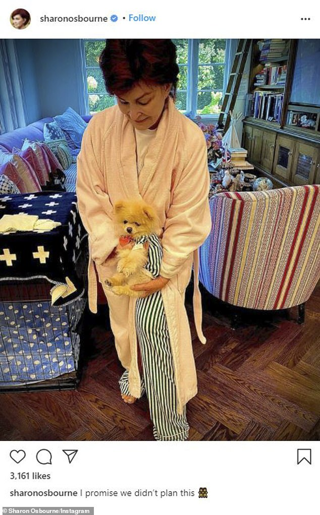 Well, one of them has to change!  Sharon Osbourne posted an adorable photo of her Pomeranian wearing a shirt to match her pajama pants amid the fallout after being kicked from her show The Talk