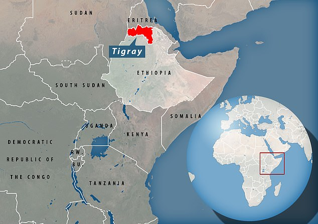 The mass killing is just the latest tale of terror to emerge from Ethiopia's Tigray conflict since Ethiopian Prime Minister Abiy Ahmed announced a government offensive against regional leaders in November last year
