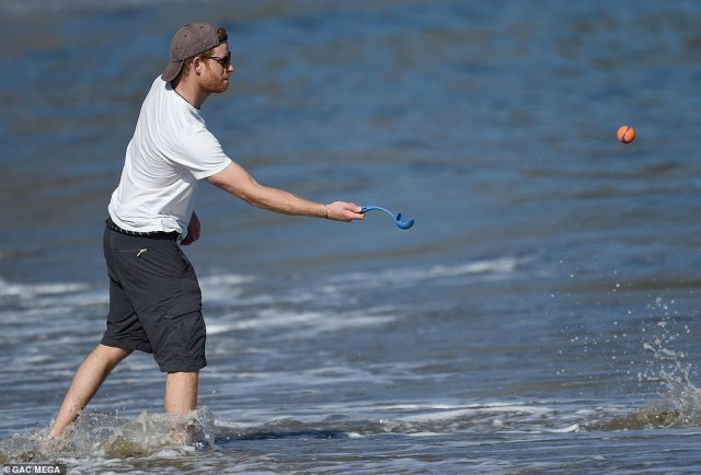 A relaxed Duke of Sussex, 36, wore his baseball cap backwards and sported a pair of sunglasses while frolicking in the sea and throwing a tennis ball for his dog