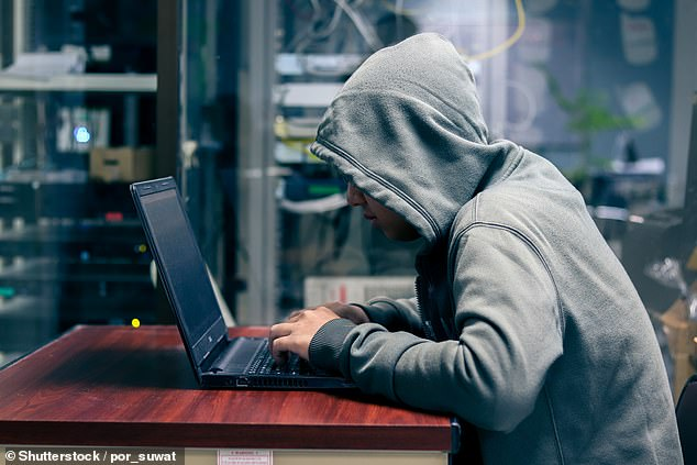 The fast-growing crime involves hackers seizing control of an IT system or data and demanding money to release it