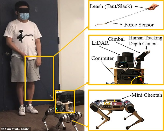 The setup ¿ built on a design called a mini cheetah ¿ features a laser-ranging system to map out its surroundings and a camera to track the human it is guiding