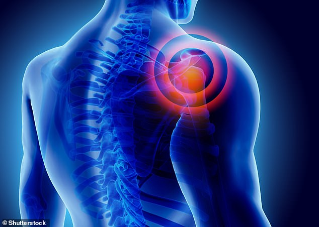 Researchers admitted that it's unclear whether their findings could be generalised to pain disorders other than shoulder pain (stock image)