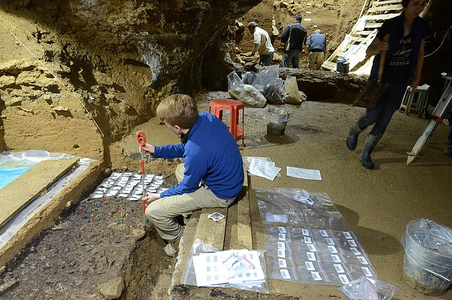 Pictured, excavations at Bacho Kiro Cave. The excavator in the front is recording artifacts (each marked with a colored pin). The bags with barcodes are for individual artifacts once their position has been recorded with a total station