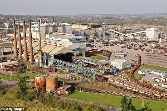Mr Healey told the Financial Times today that he felt his letter was the right thing to do as 'the local constituency MP' for Liberty Steel's Rotherham plant