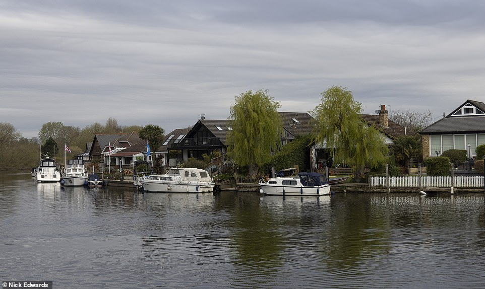 The picturesque riverside location in Walton-on-Thames in Surrey where dozens of trees have been chopped down