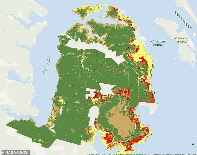 Rising sea levels are transforming the once lush woodlands along North Carolina's coast into lifeless trunks known as 'ghost forests.' The leafless, limbless trees stretch over 11 percent (shown in red) of the state's Alligator National Wildlife Refuge