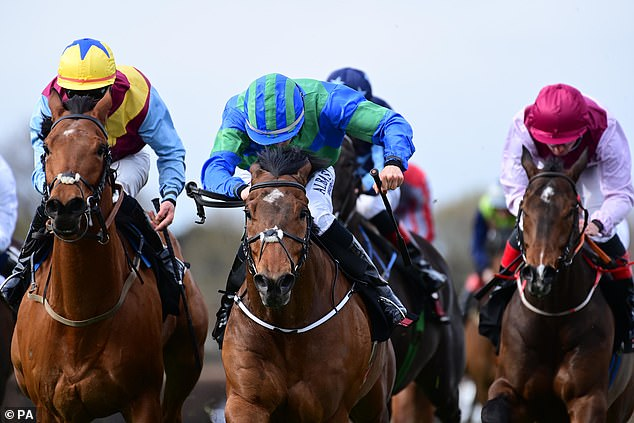 Sportsmail's racing expert Robin Goodfellow dishes out his tips for Tuesday's meetings