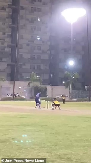 The batter swings his bat and hits the ball that hits the bowler's head