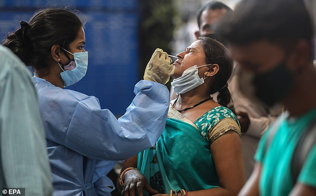 The Indian Covid variant is unlikely to set lockdown easing back to 'square one' because immunity from vaccines 'won't just disappear', a leading immunology expert claimed. Pictured: A health worker takes a nasal swab sample of a woman to test for Covid-19 at Chhatrapati Shivaji Maharaj Terminus railway station in Mumbai