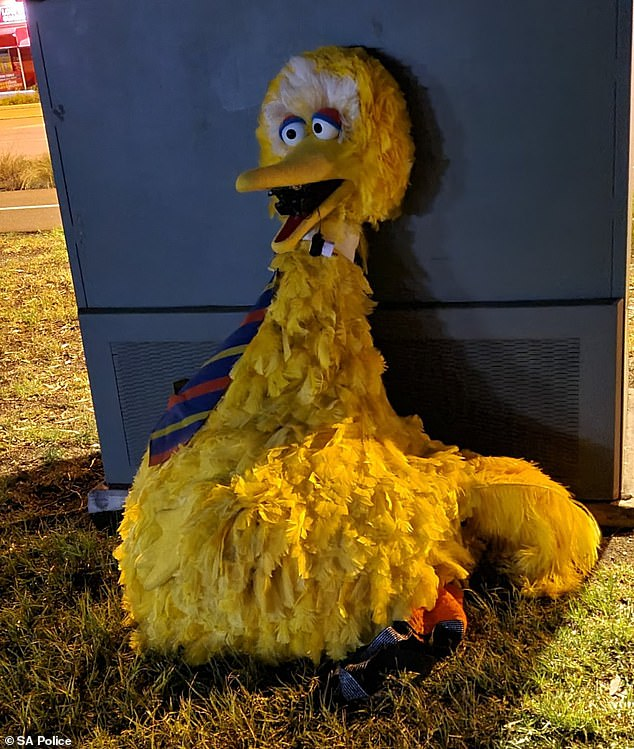 A Big Bird costume stolen from a Sesame Street-themed circus and held captive for days has been found dumped on the site (pictured) with a letter stuffed inside its beak