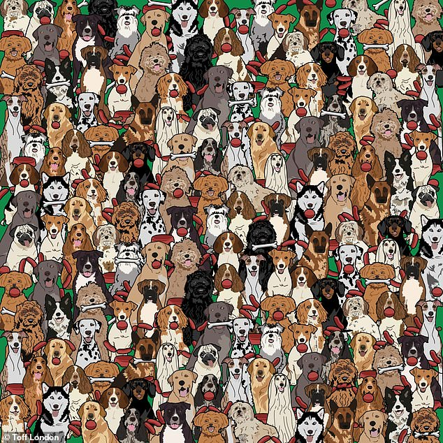 The brainteaser, by watch retailer Toff London, challenges you to find the dog who has a string of sausages in his mouth hidden in a graphic among sausages and other pooches to throw you off
