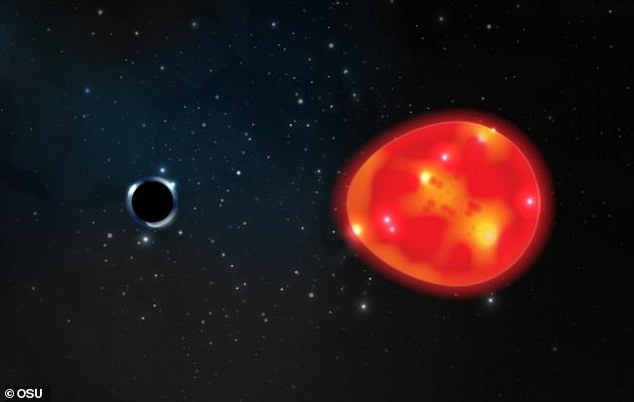 A new black hole (left) has been identified that is the closest to Earth and smallest ever to be observed.Scientists say 'it was essentially hiding in plain sight,' but were only able to detect the black hole by its bloated red giant star companion (right)