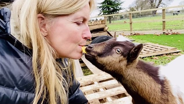 Miss Lancaster, 50, said on Instagram: 'Falling in love with my new five-month-old pygmy goats, Rupert, Biscuit and Hazel'
