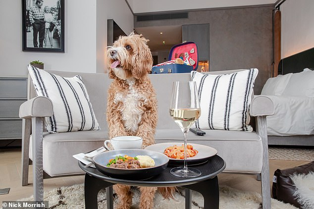 Hilton has unveiled Bone Appétit, 'a mouth-watering new dog menu to provide the nation with an easy way to show their canine pals they care'