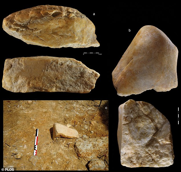 Homo erectus would have chipped at quartzite cores (pictured) at the site to create cleavers and other rudimentary stone tools