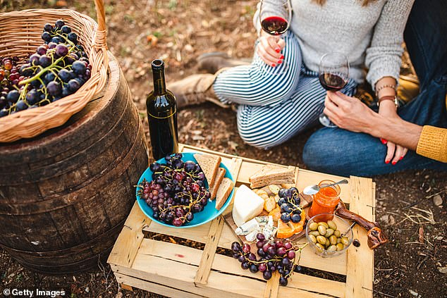 Aldi Australia's wine expert and buying director Jason Bowyer compiled his recommendations, with each bottle costing less just $15, proving wine lovers don't need to fork out a fortune to enjoy a good drop (stock image)
