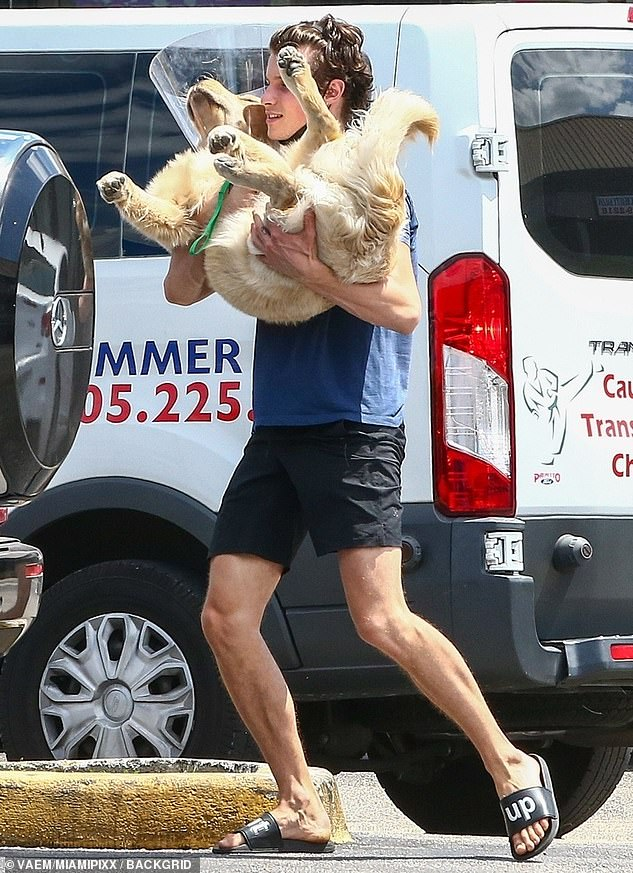 Sweet: Shawn Mendes looked every inch the doting dog dad as he cradled his puppy Tarzan in his arms, after a veterinarian appointment on Wednesday in Coral Gables, Florida
